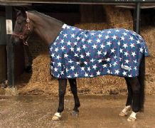 Rhinegold Lightweight Star Design No Fill Turnout Rug. Horse or Pony!